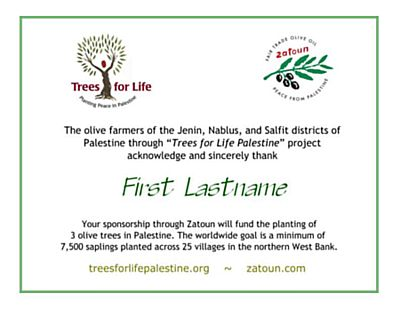 Zatoun Trees for Life certificate