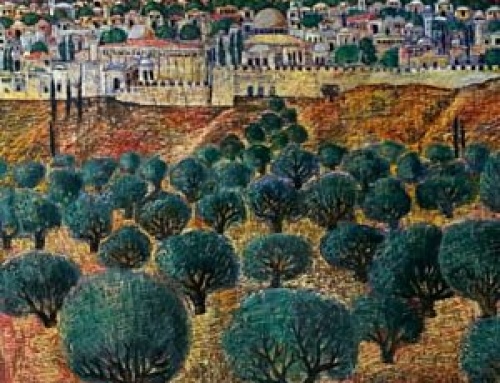 A personal history with olive oil from Palestine